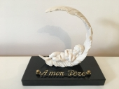 plaque-funeraire-inter-angel-plume