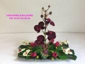cadeau-noel-fleur-orchidee