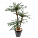 18 - palmier-3-troncs-new-tf 160 cm - 18175 - 11