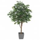 71 - chene-arbre-new 280 cm - 10892 - 71